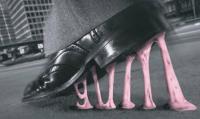 farid gum