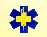 MedicSEH